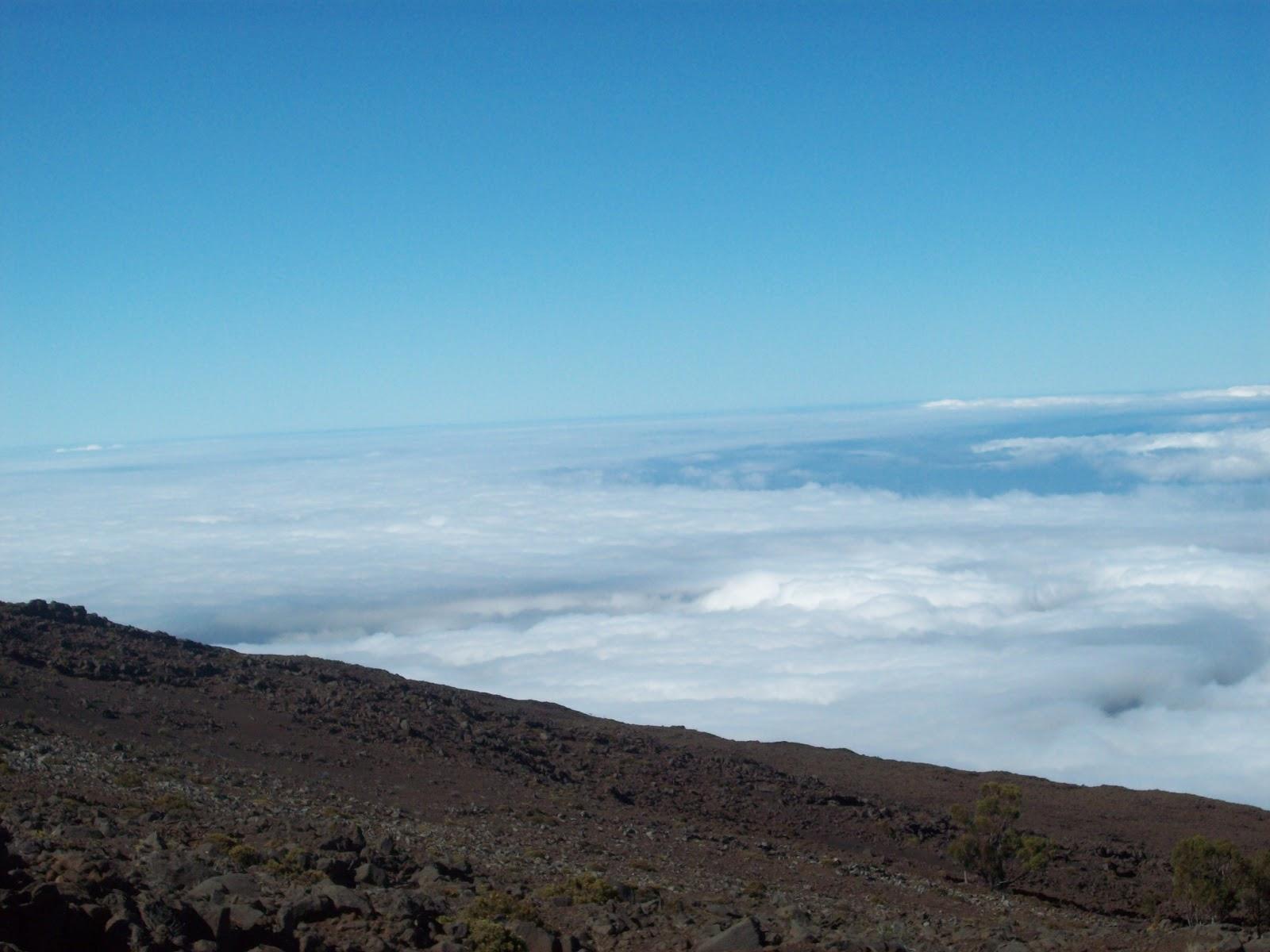 Hawaii Day 8 - 114_2080.JPG
