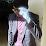 Andiva Alfred's profile photo