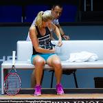 Petra Kvitova - 2016 Porsche Tennis Grand Prix -DSC_3252.jpg