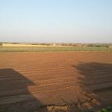 Maher-Farming-08.jpg