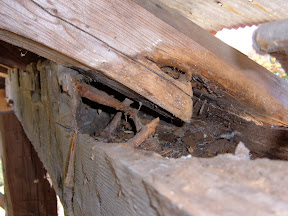 The plates and rafters were mostly hollow.