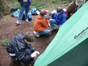 How many scouts does it take....