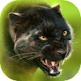 Panther Online apk