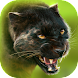 Panther Online - Androidアプリ