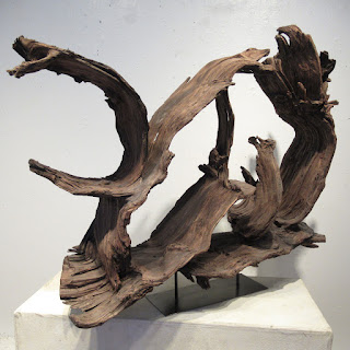 Large-Scale Driftwood Assemblage