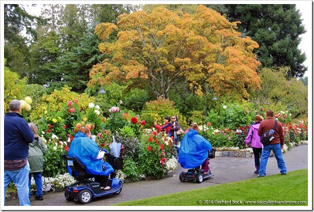 160906_Butchart_Gardens_0093