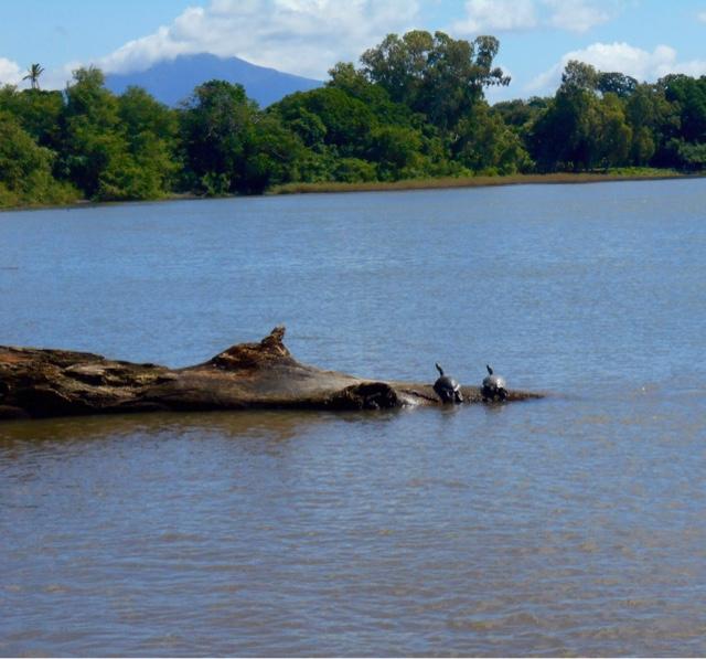 Nicaragua, Lake Nicaragua, Ometepe, Travel, Travel blogger, travelsandmore