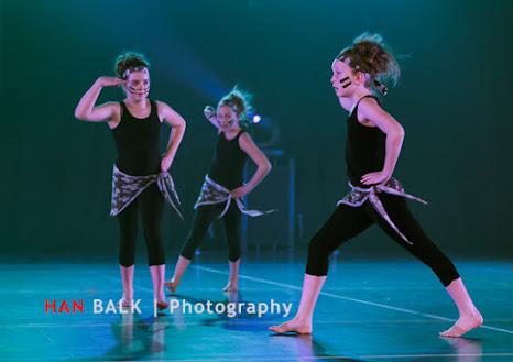 Han Balk Voorster Dansdag 2016-3678.jpg