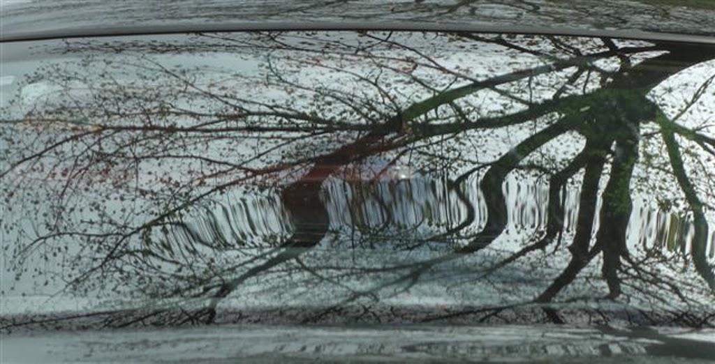 """Windshield Patterns"" by Joyce Estep - B General"