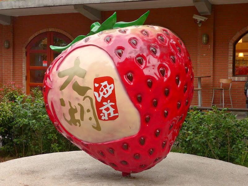 Miaoli county. Nanzhang puis Dahu la capitale de la fraise... - P1050303.JPG