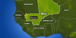 Après la prise d'une ville par des terroristes: Le ministre malien de la Défense limogé