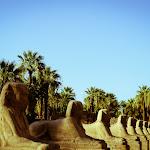Egypt Edits (264 of 606).jpg
