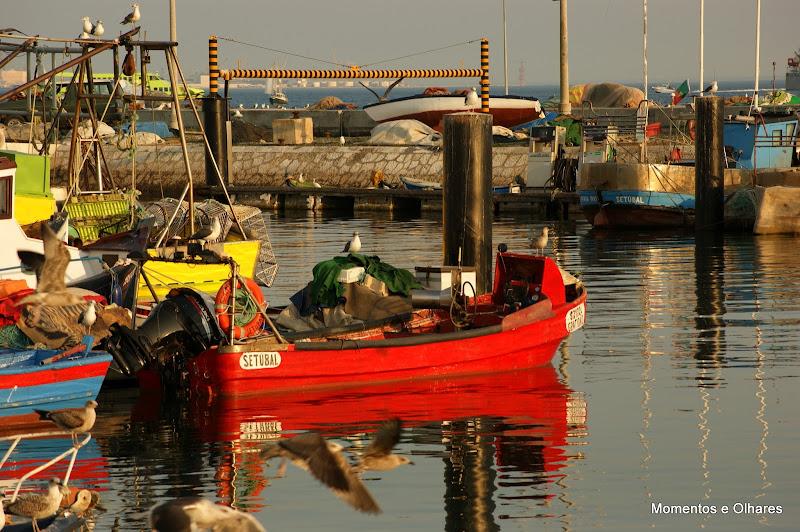 Doca dos Pescadores