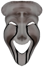 SCP 035