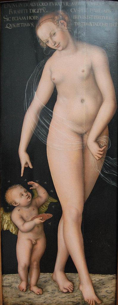 Lucas Cranach l'Ancien (1472-1553)  - Venus et Cupidon