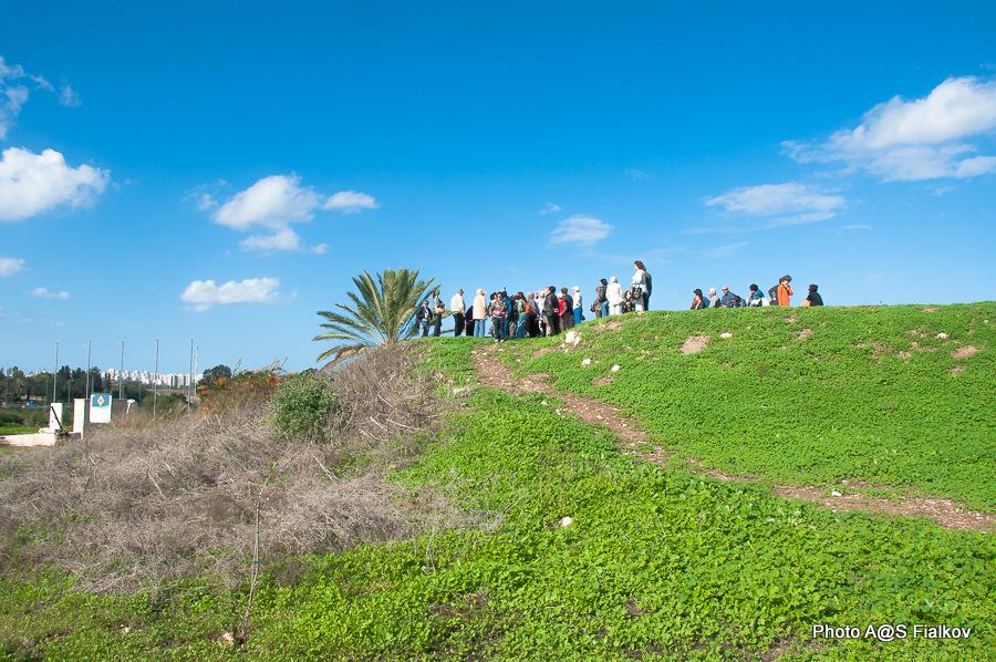 Парк Афек. Гид в Израиле Светлана Фиалкова.
