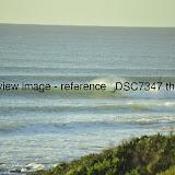 _DSC7347.thumb.jpg