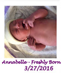 Welcome Annabelle