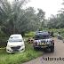 Diduga di Begal, Mobil Misterius Teronggok di Tengah Kebun Sawit di Sukabumi