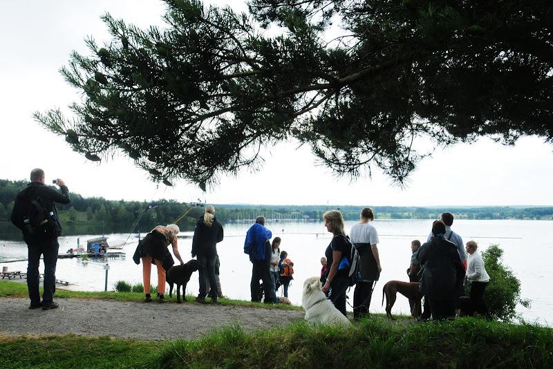 20130623 Erlebnisgruppe in Steinberger See (von Uwe Look) - DSC_3739.JPG