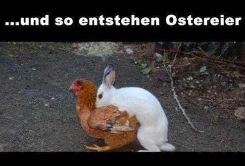 .. und so entstehen Ostereier