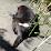 Taka Coma's profile photo