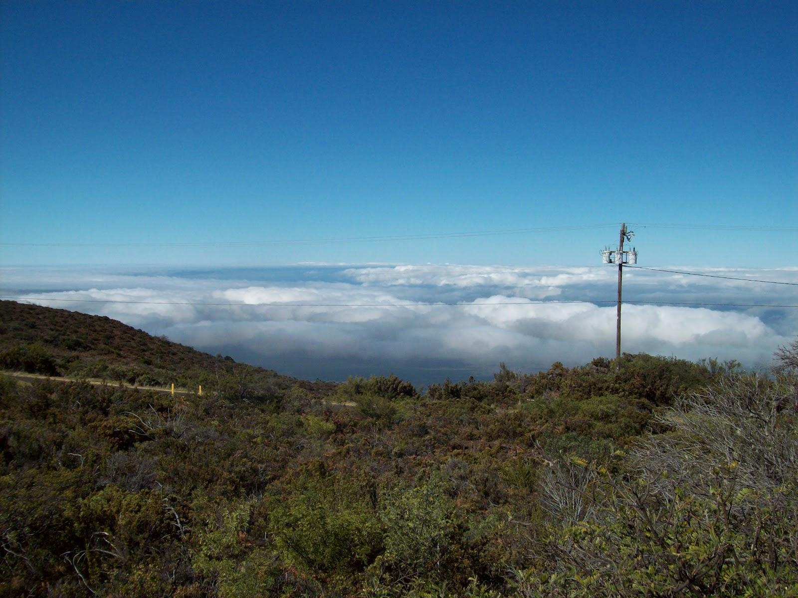 Hawaii Day 8 - 114_2033.JPG