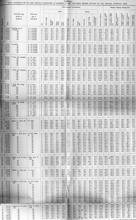 ef9fb812a3c6ff295baf5353.jpg