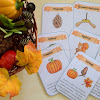 Autumn Nature Finds and  How We Use Them