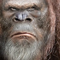 Vman Oz's avatar