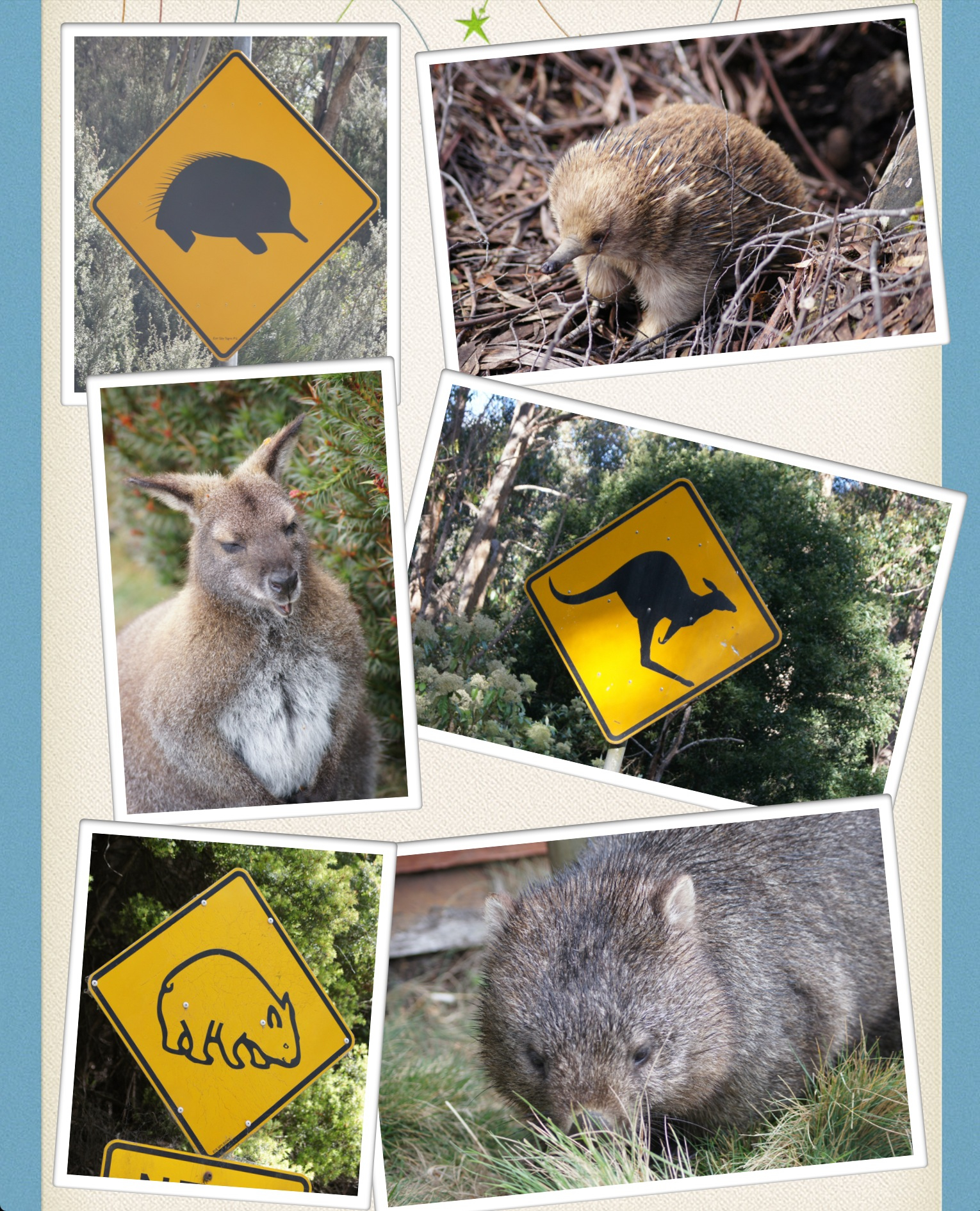 meilleur site de rencontres tasmanienne Virtual Dating Keeley procédure pas à pas