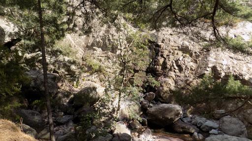 Le long du sentier de la bergerie de Saltare