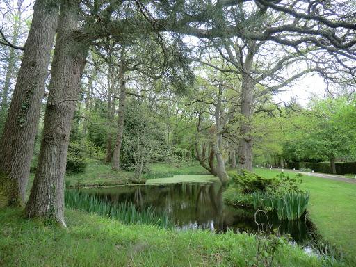 CIMG6375 Pond outside Waystrode Manor