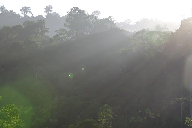 Début de matinée devant les Carbets de Coralie (Crique Yaoni), 31 octobre 2012. Photo : J.-M. Gayman