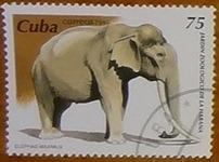 timbre Cuba 002