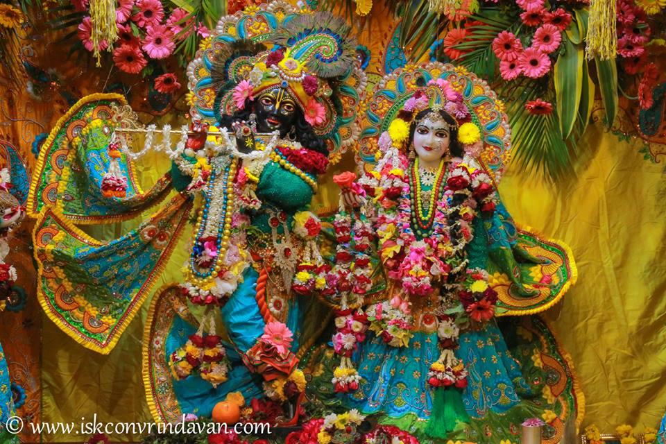 ISKCON Vrindavan Deity Darshan 03 jan 2017 (1)
