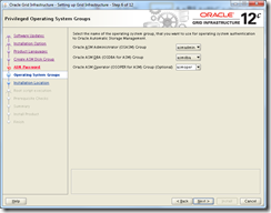 Oracle Grid Infrastructure 12c Installer - OS Groups