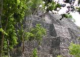 Calakmul central plaza - Pyramid VII.JPG