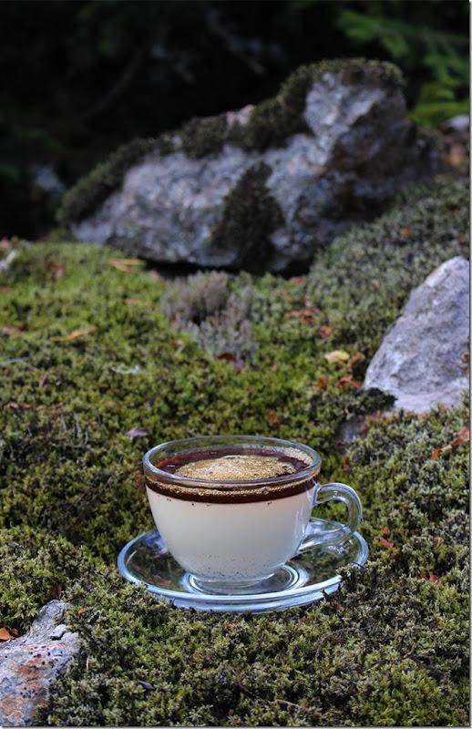 En kaffekopp med fat av glas fylld med vanilj-pannacotta dekorerad med kaffe-gele på mossbetäckta stenar.