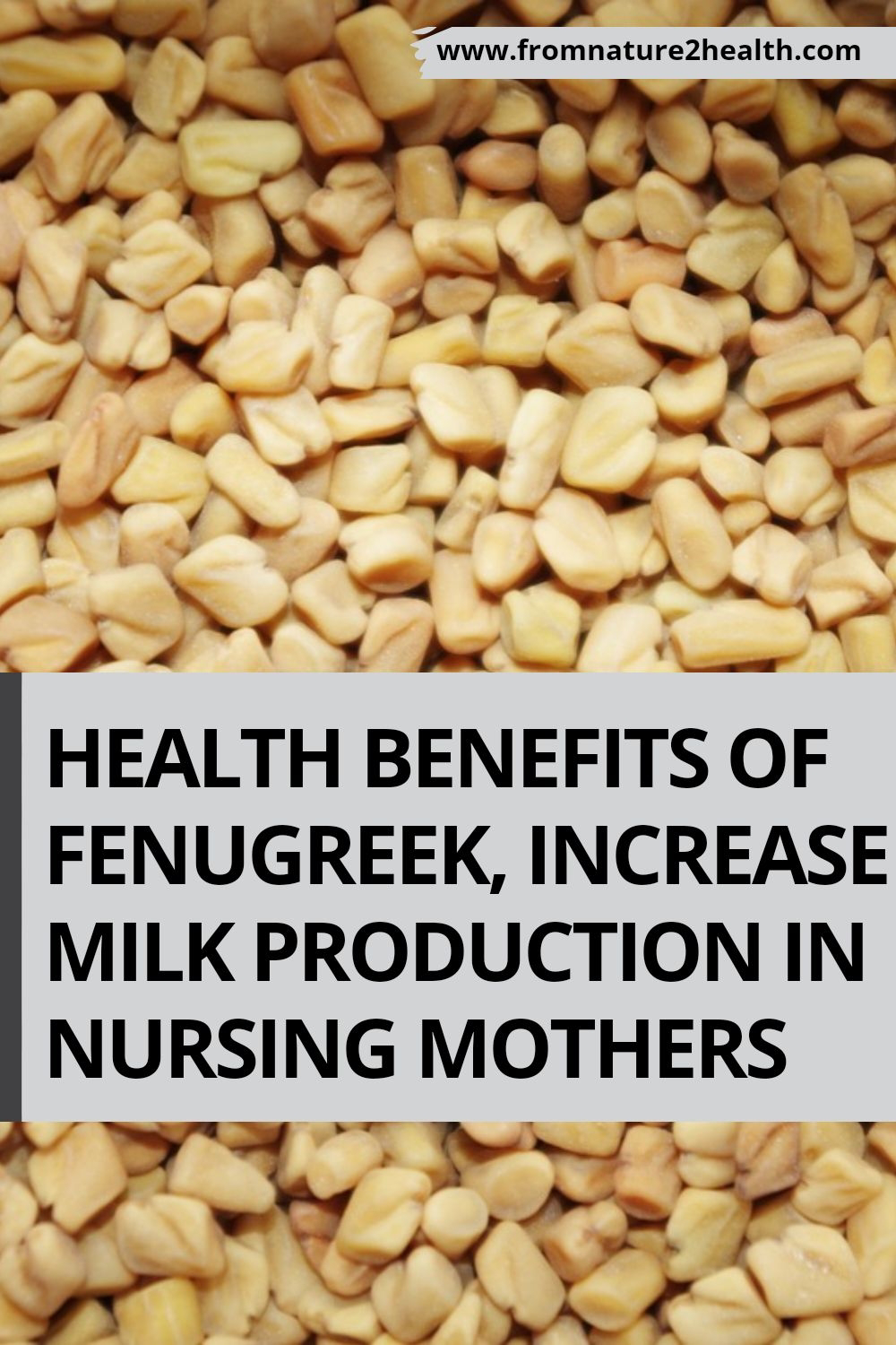 Health Benefits of Fenugreek, Increase Milk Production in Nursing Mothers