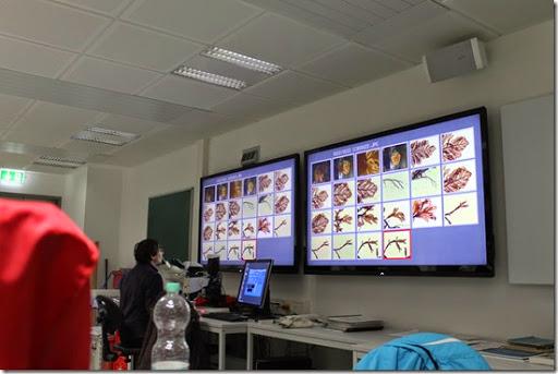 Helgoland Labor Bildschirme