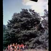 dia060-029-1965-tabor-bakony-ii.jpg