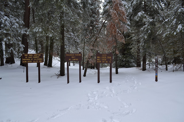 signs at the top of the trail