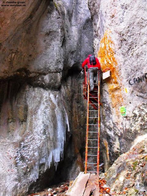 intrarea in Canionul Sapte Scari