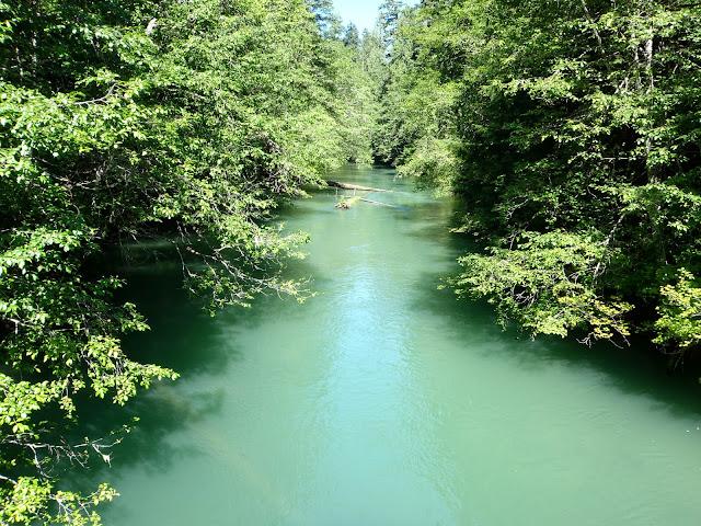 Ross Lake July 2014 - P7090099.JPG