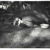 n026-027-1968-tabor-szigliget.jpg