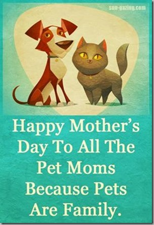 happy mothers day-pet moms