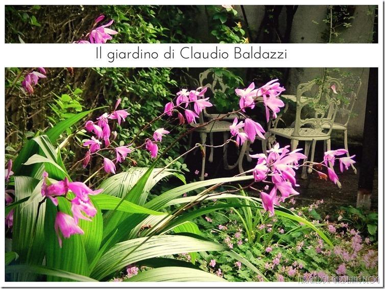 Il giardino di Claudio (10)