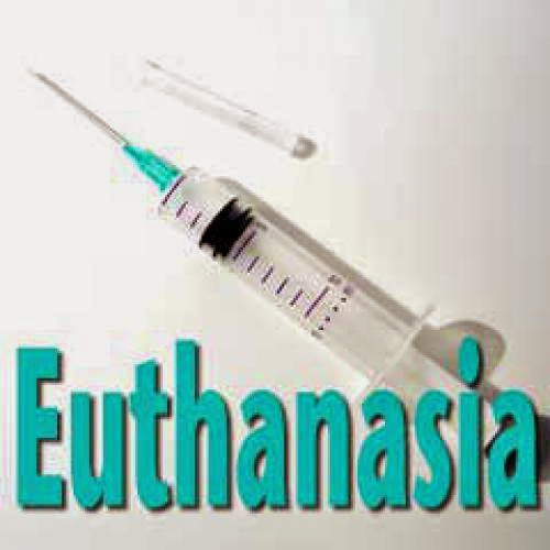 Euthanasia And Islam Part 2