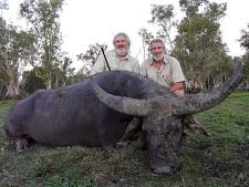 water-buffalo-hunting-safaris-25.jpg